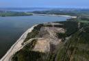 Radweg am Sedlitzer See wird für Bauarbeiten gesperrt