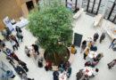 Corona-Virus: Schlaganfallsymposium des Klinikums Niederlausitz abgesagt