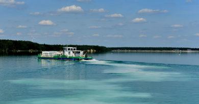 Im Juni beginnt die Initialneutralisation am Sedlitzer See
