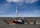 EU-Fischereiminister beschließen Fangquoten 2021 für die Ostsee